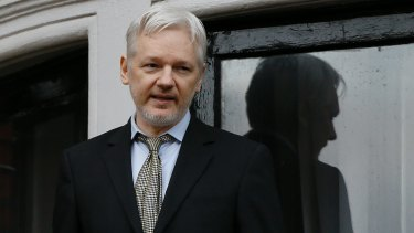 WikiLeaks founder Julian Assange has hinted he may run for UK Parliament.