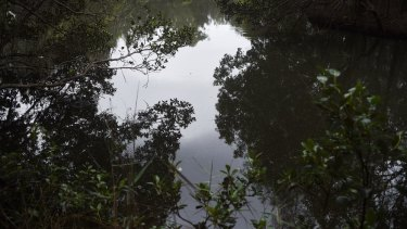 Increased access to the waterwaters may put parts of Deepwater Park near Milperra at risk.