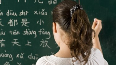 Teachers need specific training to meet the demands of the Chinese language but currently they receive none.