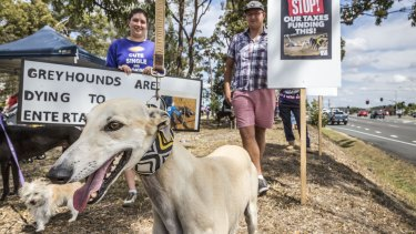Animal rights activists protested the proposed track for about five years.