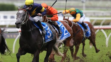 Late run: Tommy Berry rides Chautauqua to an unlikely win in the T.J. Smith Stakes.