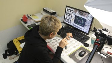 Shipwreck coin expert, Carol Tedesco, examines coins recovered from the San Jose at the IMDI project lab in undated handout photo.