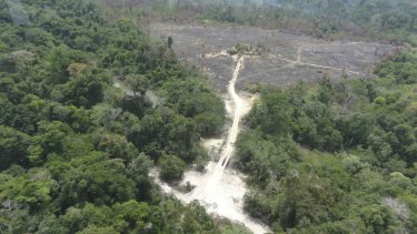 A part of the Amazon rainforest destroyed by loggers and farmers.