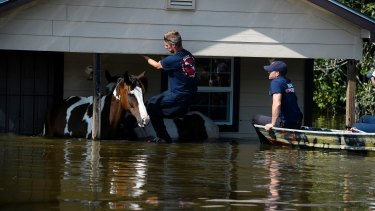 Texas was battered by Hurricane Harvey and subsequent flooding.