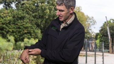 Melbourne Zoo's head vet Dr Michael Lynch shows  the elephant calf's problem.