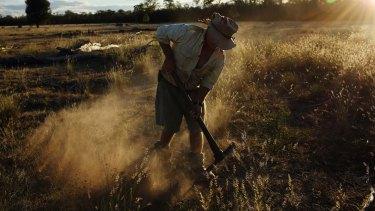 A farmer works the land around Queensland's Western Downs region.