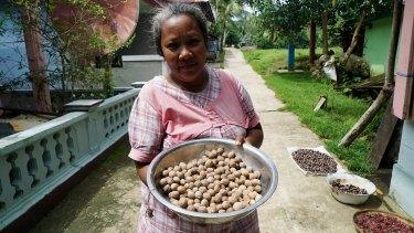 Dried nutmeg in Run. Most islanders still farm nutmeg and cloves as well as fish for tuna.