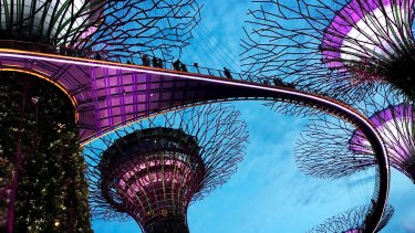 Gardens by the Bay in Singapore. BHP is one of many companies that have hubs in the island nation which the tax man has questioned.