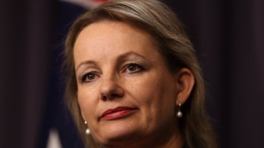 Sport  Minister Sussan Ley said it was ''inappropriate to be talking about putting more taxpayers' funds into a rebid when we have serious allegations about corruption unfolding''.