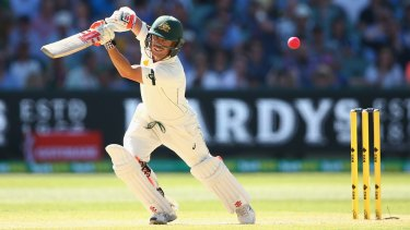 Change isn't always a good thing: Test opener David Warner says the jury is still out on the pink ball.