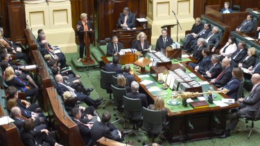 Rosie Batty addressing a joint sitting of the Victorian Parliament on Thursday.
