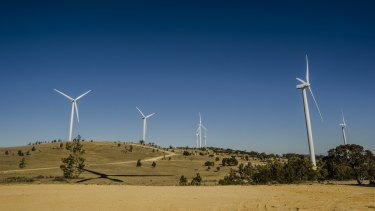 The Capital Wind Farm near Canberra.