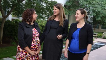Ms Rishworth with  Ms O'Dwyer and Kate Ellis earlier this year.