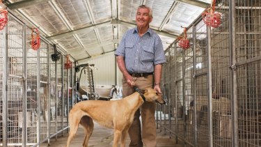Greyhound breeder and trainer Greg Board on his property just south of Orange.