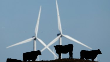 No bull: wind energy costs continue to fall, sinking about 50 per cent in the past five years.