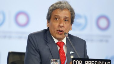 COP 20 President and Peru's Environment Minister Manuel Pulgar Vidal said the Lima deal was a winner for all countries.