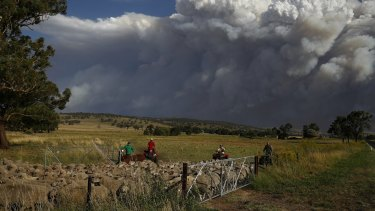 Livestock being relocated from property near Coolah as smoke from the Sir Ivan fire east of Dunedoo, NSW, seen in the background, on Sunday 12 February 2017.