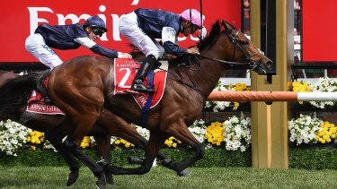 Rekindling, ridden by Corey Brown, wins the Melbourne Cup.