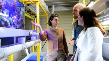 Gladys Berejiklian talks to technicians at the Sydney Institute of Marine Science.