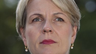 "Labor's foreign spokeswoman Tanya Plibersek says if Mr Abbott believes Australia should be involved in Syria ""he should make a case to the Australian people"" in the Parliament."