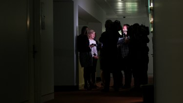 Foreign Minister Julie Bishop speaks to the media at Parliament House earlier this week.