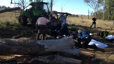 Paramedics and CareFlight rescue helicopter workers treat the man after a gum tree fell on him south of Warwick.