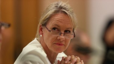 NSW Nationals Senator Fiona Nash ... new deputy leader.