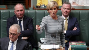 """Foreign Minister Julie Bishop is sometimes overlooked, but her confected outrage at Labor over """"Kiwis under the bed"""" was a little overcooked."""