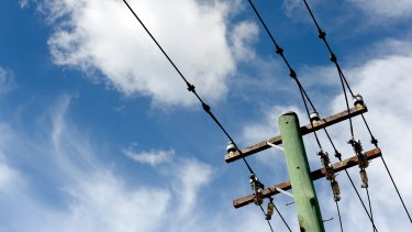 A Macquarie-led group has won the auction for NSW distributor Endeavour Energy.