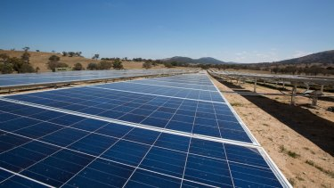Williamsdale solar farm in the ACT.