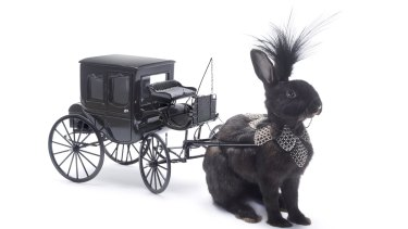 Whimsy: Bunny Carriage, by Julia deVille.