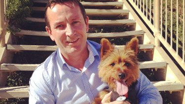 Mark McGowan has vowed to put an end to WA puppy farms if elected in 2017.