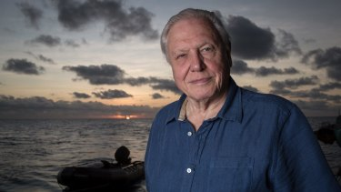 David Attenborough at the Great Barrier Reef.