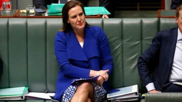 Assistant Treasurer Kelly O'Dwyer is the member for Higgins and under pressure from the Greens.
