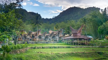 Hiding rats? A traditional village on Sulawesi.
