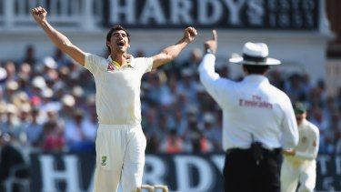 Mitchell Starc celebrates taking the wicket of Alastair Cook.