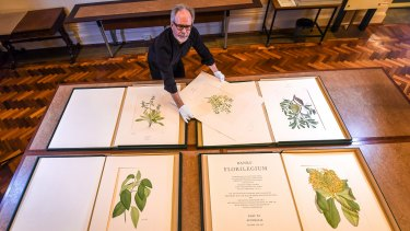 Des Cowley with some of the prints made from copper plates using Sydney Parkinson's drawings.