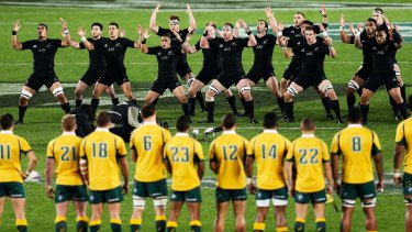 Time for a tribute: The All Blacks perform the haka during the Bledisloe Cup match at Eden Park in August