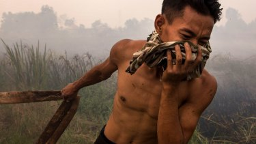 A firefighter holds a water pipe on burned peatland and fields at Sungai Rambutan village, South Sumatra.