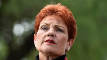 Pauline Hanson speaks in Brisbane on Monday.