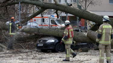 Firefighters remove parts of a tree from a street at Wedding district as Storm Niklas strikes in Berlin.