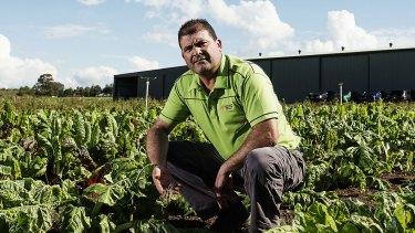 SYDNEY, AUSTRALIA - APRIL 24:  Steve Grima poses for a portrait at his vegetable farm in Horsley Park on April 24, 2015 in Sydney, Australia.  (Photo by Christopher Pearce/Fairfax Media)