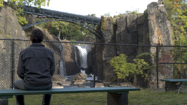 Driver as Paterson contemplates the Passaic Falls in