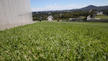 The lawns at Parliament House.