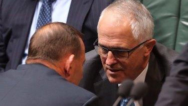 Prime Minister Tony Abbott and Communications Minister Malcolm Turnbull.