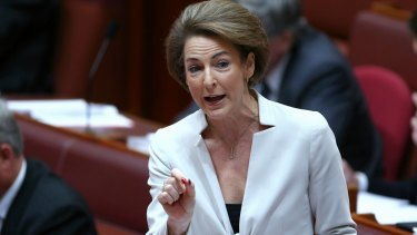 """There has been a """"worrying rise"""" in revenge porn, says Minister for Women Michaelia Cash."""