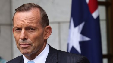 Tony Abbott's highly vocal week has not been 'the most helpful thing he could be doing', says one Liberal MP.