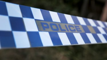 Police a seeking burglars who severely bashed a pet dog in a Daisy Hill home.