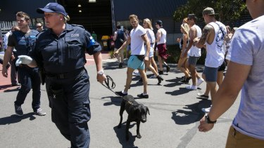 Police used sniffer dogs as partygoers arrived at the Stereosonic festival in Melbourne.