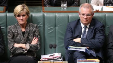 Ms Bishop's support for the principle of the reform means Scott Morrison is the only potential Liberal leadership contender who opposes allowing gay couples to marry.